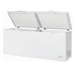680 L Chest Freezer - 1/Case