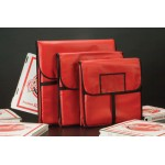 PIZZA DELIVERY BAG, STANDARD, 18 SQ. 18 SQ. HOLDS TWO 16 PIZZA BOXES